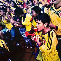 Colombia football fans cheer while watching the football match between Colombia and Japan at the FIFA World Cup 2014, in a park in Cali, Colombia, 24 June 2014.
