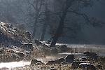 Winter rural scene in Lake District, England