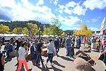 Estes Park Elk Fest