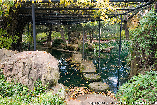 Douglas Chandor Garden Arbor With Stepping Stones Weatherford Texas Mann Mg Charles