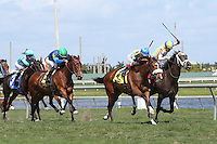 03-04-17 Fountain Of Youth Stakes Day Gulfstream Park