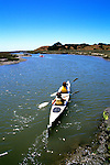 California: Monterey area.  Kayaking in Elkhorn Slough.  Photo #: camon2105..Photo copyright Lee Foster, 510/549-2202, lee@fostertravel.com, www.fostertravel.com