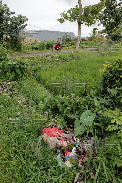 Trash is strewn between rice fields. The village of Sidamen is renowned for its' beauty yet locals are inclined to drop garbage anywhere.