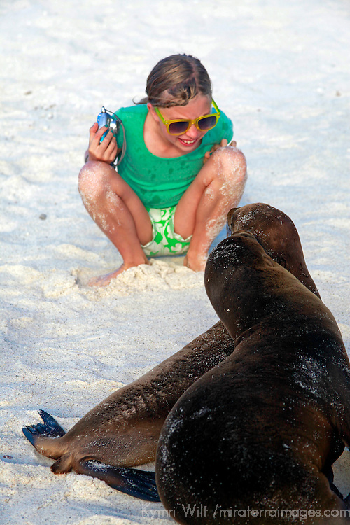 South America, Ecuador, Galapagos Islands. Young girl watches two Galapagos Sea Lion pups.