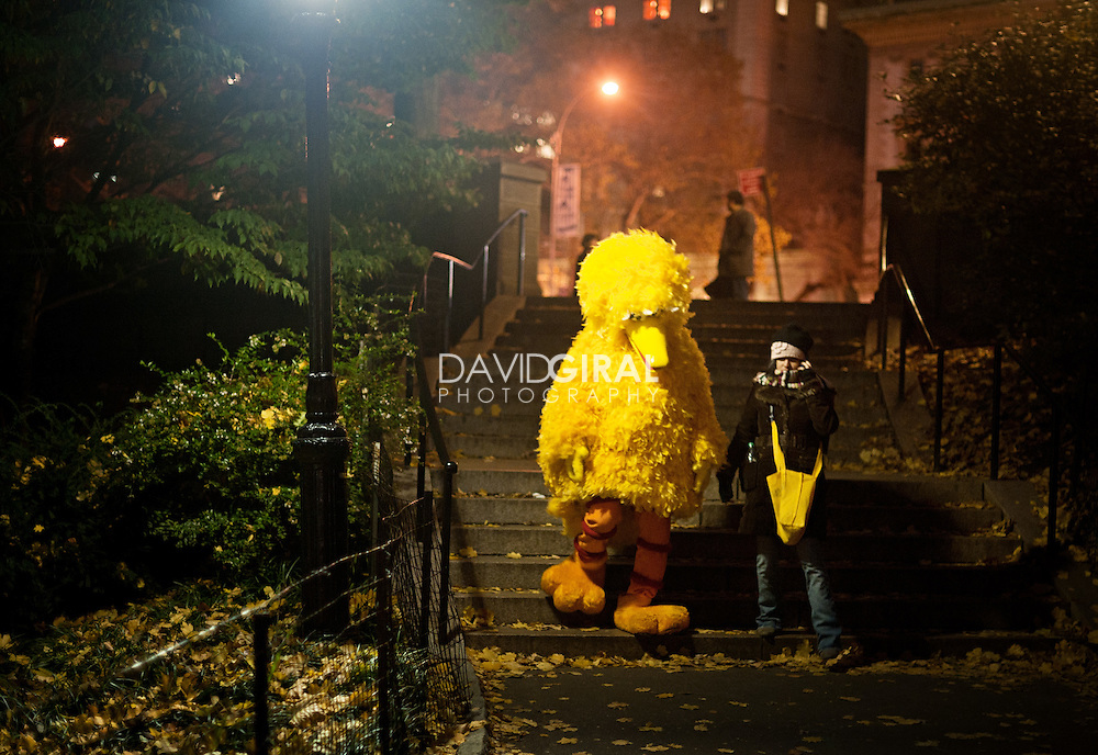Editorial Travel Photography: Big Bird and the girl at night in Central Park, Manhattan, New York City, NYC, USA