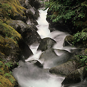 Nickel Creek flowing through Mt. Rainier National Park, WA.