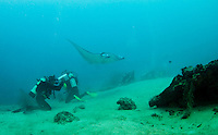Yap, Micronesia, (FSM) is famous for its marine life including manta rays, gray reef sharks and healthy coral reefs and fish.