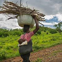 Carrying her child, a woman living in the Yinduri community near the Bolga area of Ghana balances a load of firewood.