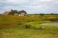A Farm near Santa Lucia, Pinar del Rio, Cuba. There is a pond and pasture in the foreground amd a thatch roofed barn and house in the background.