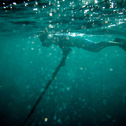 A diver spear fishes in the Federated States of Micronesia in the Pacific Ocean. Divers and fishermen travel from all over the world to have the opportunity to fish in some of the most pristine environments left on the planet.