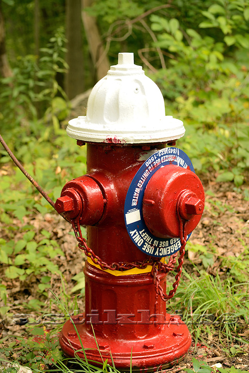 Hydrant on red and white.
