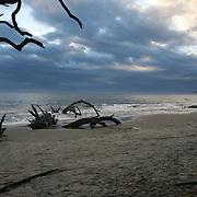 Morning High Tide on a driftwood strewn Jekyll Island beach.