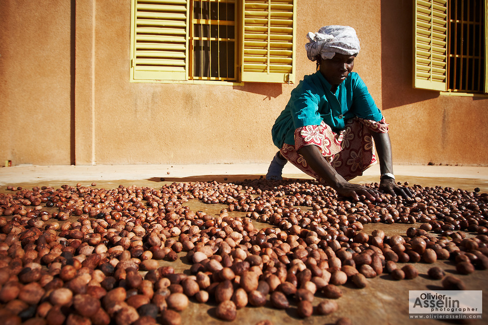 A woman spreads shea nuts on a concrete floor to dry them in the sun at the Si Yiriwa shea processing center in the town of Diolila, Mali on Friday January 15, 2010.