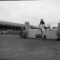 RDS Horse Show. Diana Connolly-Carew on Barrymore clearing a jump in the Aga Khan Trophy Competition..08.08.1963