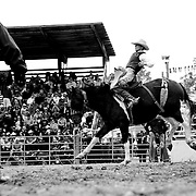 A PRCA official watches, as a cowboy tries to stay on his horse.<br />