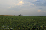 IOWA 11501: FARMS