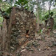 West Indies Plantations