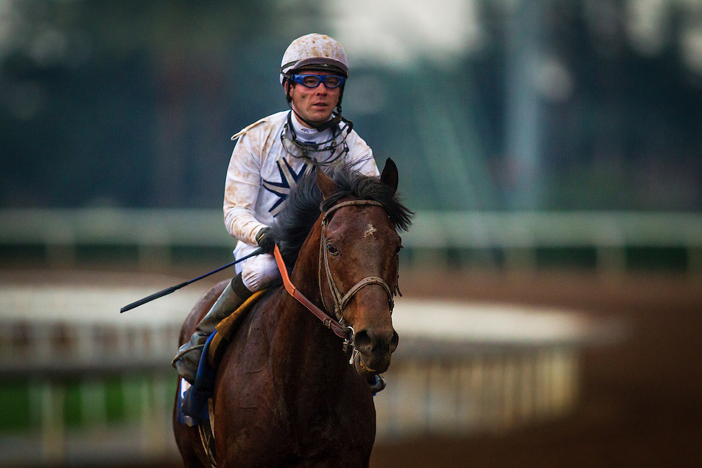 January 10 2014: Majestic Harbor and Tyler Baze after the San Pasqual at Santa Anita Park in Arcadia CA. Alex Evers/ESW/CSM