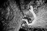 David on Whiteout, 5.8, at Emerald City at the Red River Gorge.
