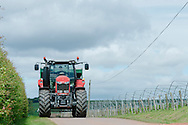 7th June, 2015. Open Farm Sunday at Castleon Farm, Fourdon, Laurencekirk supported by Massey Ferguson.<br /> <br /> Ross Mitchell, his family and staff welcomed hundreds of visitors to their  farm today as part of the Open Farm Sunday Initiative. <br /> <br /> Photographs by Craig Stephen