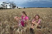 12 year old Pippa Reilly on her family's wheat field (paddock) with friend Kiri-Lee Ward, Wyalkatchem, Western Australian Wheatbelt. 10 December 2012 - Photograph by David Dare Parker