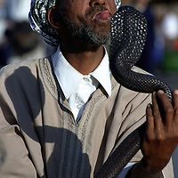 Moroccan snake charmer at Djemaa-el-Fna in Marrakesh.