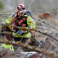 A rescue worker with a search and rescue dog looks for the remains of a 3-month-old lost in the mudslide near Oso, Washington as efforts continued to find victims March 26, 2014. The death toll from a weekend landslide in Washington State looked set to rise on Wednesday but officials say some of the scores of people listed as missing may have been double-counted or slow to alert family of their whereabouts. REUTERS/Rick Wilking(UNITED STATES)