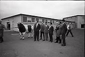 1965 - Japanese Trade Delegation visit Leinster A.I. Station, Clondalkin, Dublin