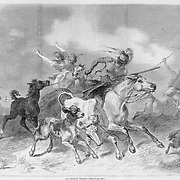 """""""An Indian Foray""""  Plains Indians raid a farm stealing livestock and white women prisoners. American Indians. Illustration from Harper's Weekly May 10 1873"""