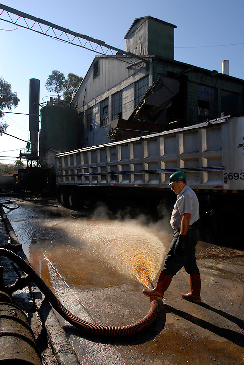 """San Jose Tallow Cie recycling site. This family owned business started in 1929 was contacted by plants owners in 2006 to collect and filter the """"yellow grease"""", waste vegetable oil..California, USA, September 2008"""