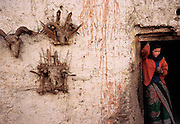 Totem protector skulls adorn the outside of a house.<br />