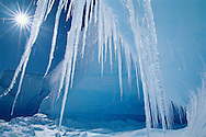 Icicles and sun, Alta Bay, Antarctica