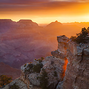 GRAND CANYON - VERTICALS