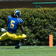 Delaware Wide receiver Rob Jones (5) attempts to dive into the end zone for the score in the second half of The University of Delaware Annual Spring football game Saturday May. 04, 2013 at Delaware Stadium in Newark Delaware...Delaware will open it home schedule against Jacksonville University Aug. 29, 2013 at 7:30 p.m
