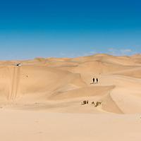 Namib 550 - The Runners