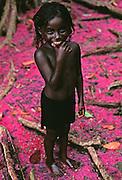 Celia - Solomon Islands