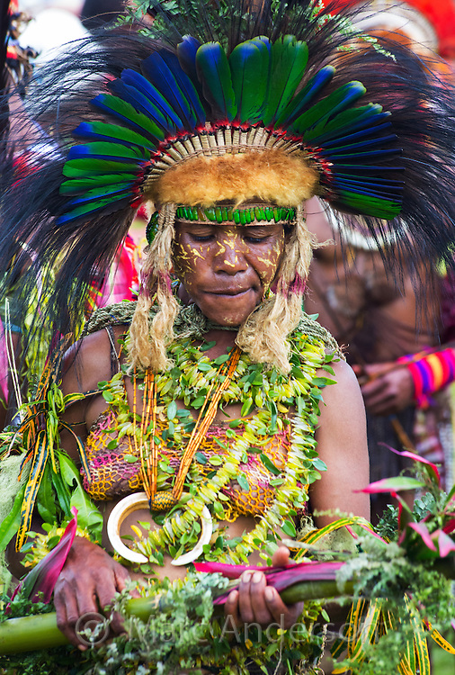 Woman dancing and wearing traditional tribal dress for the Goroka Show, Papua New Guinea. She is wearing colourful necklaces made from orchid bulbs and leaves, and a large headdress adorned with feathers from male Eclectus Parrot and Cassowary.