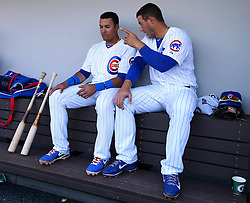 Javier Baez and Anthony Rizzo, 2014