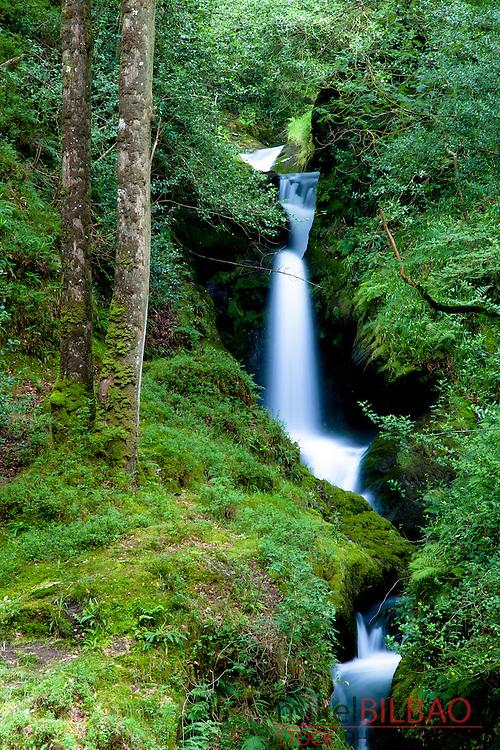 Poulanass waterfall. Wicklow Mountains National Park. County Wicklow. Ireland