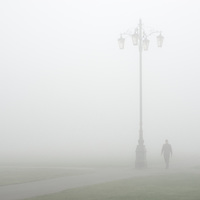 Out of the Fog. Cambridge, England