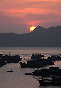 Fishing boats in Cat Ba harbour at sunset , Cat Ba Island, Vietnam