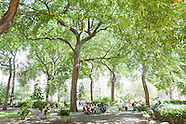Union Square Park | Selected Images