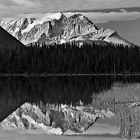 Emerald Lake monochrome