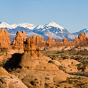 The La Sal Mountains rise behind arches, buttes, and pinnacles of the Windows Section of Arches National Park, Utah, USA. (Panorama stitched from 4 photos.)