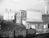 1954 Frigorifico of Ireland Ltd