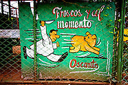 Cuban Pigs, Life and Death.