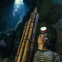 A man holding climbing poles, Miri Caves, Miri, Sarawak, Malaysia, Borneo,