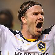 LA Galaxy win MLS title