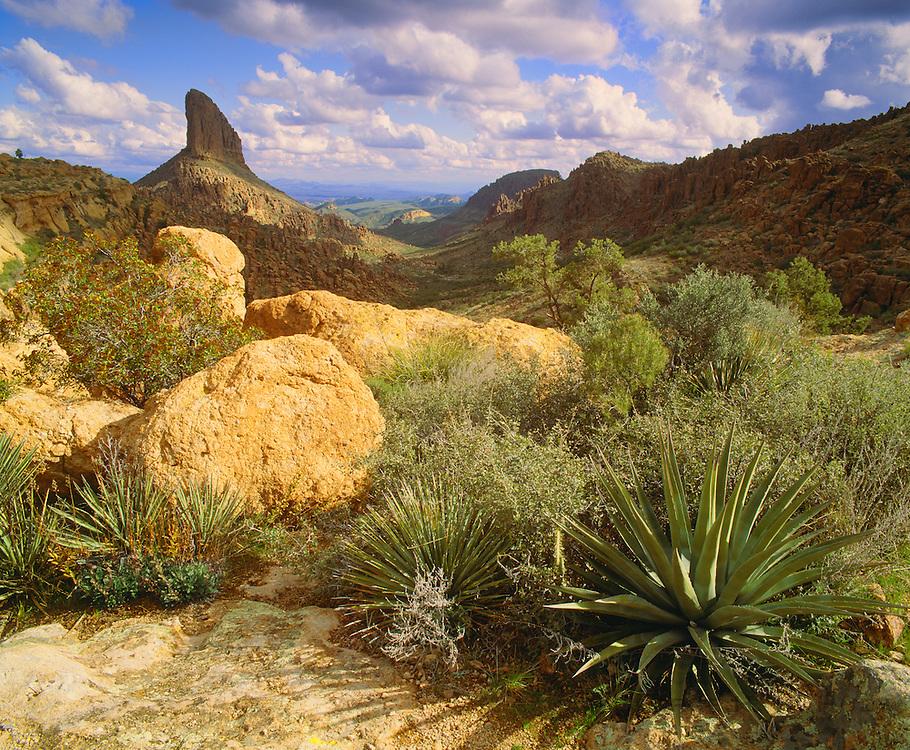 0146-1006 ~ Copyright: George H. H. Huey ~ Weavers Needle from Fremont Saddle. Fremont Saddle Trail, Superstition Mountains. Tonto National Forest, Arizona.