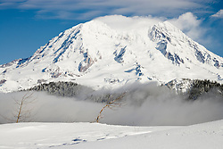 Mount Rainier in winter from the SW across the Glacier View Wilderness from the Mount Tahoma Trails Hut-to-Hut cross country ski system. Cascade Mountain Range, Washington, USA